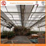 농업 다중 경간 설치하거나 꽃을%s 유리제 녹색 집