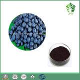 Выдержка черники, Anthocyanidins 15%-35% HPLC, 100% естественное