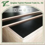 Chapas de madera laminada / melamina Frente de Papel 18 mm Madera contrachapada