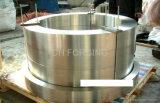 La forja de anillo (DH013)