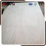 Base de la madera dura del álamo madera contrachapada caliente de Okoume de la prensa de 2 veces para los muebles