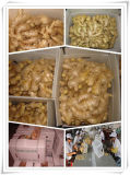 Air Dried Ginger Export to Europe Market