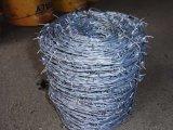 Galvanizado en caliente el alambre de púas en China