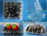 De duidelijke Doos van de Salade van de Cake van het Fruit van de Verpakking van de Blaar Clamshell Plastic Beschikbare Verpakkende