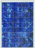 Modules solaires (120w, poly)