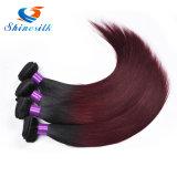 T1bバーガンディ99jの赤いミンクのブラジルのバージンの毛