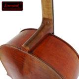 Violoncelo avançado do profissional Handmade do revestimento antigo