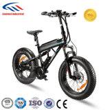 強力なモーターを搭載する2018新しいモデルの電気自転車