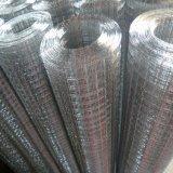 Rullo saldato animale galvanizzato della rete metallica