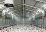 Structuur van het Staal van het Huis van de kip de Duurzame Geprefabriceerde voor Gevogelte