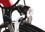 여자의 전기 도시 자전거 (LMTDF-32L)