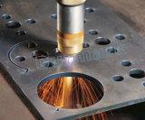 Machine de découpage en aluminium de Palsma de portique