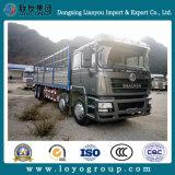 중국 판매 촉진 F3000 10X4 말뚝 화물 자동차 트럭