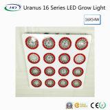 Hoch-Lumen Uranus 16 Serie LED wachsen für Handelsbearbeitung hell