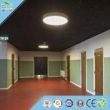 壁パネルの建築材料の音響パネルの天井のボード