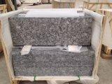 Mariposa Verde / China Baldosas de granito para pared y suelo
