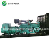 Grupo electrógeno diesel de 263kVA / Grupo electrógeno diesel impulsados por motores Cummins (BCS210)