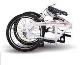 """사슬 접힘 자전거 3 속도 알루미늄 합금 프레임 없음 16 """" 접히는 자전거"""