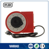 Tensione Variac 220V 5kVA elettrico Variac di monofase del fornitore