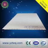 Fabrik-Plastikwand der China-hölzerne Zusammensetzung-WPC
