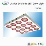 Urano LED serie High-Lumens 16 crece la luz para el cultivo comercial