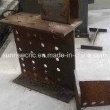 Tbs1000 de Machine van de Lintzaag van Stralen en van Buizen Voor de Vervaardiging van het Staal