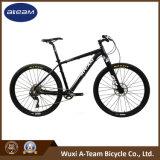 Bicicleta de montanha de Deore 1*10 da fábrica da bicicleta (MTB25)