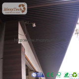 حديثة يصحّ [كمبوست متريلس] سقف زخرفيّة