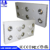高品質のクリー族の穂軸3590 LEDのプラントは軽い3000W高い発電を育てるLEDライトを育てる