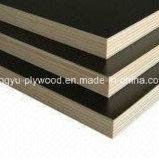 Contrachapado de chopo/ Película Negra enfrenta la madera contrachapada