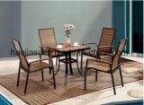 /Rattan esterno/presidenza & Tabella della mobilia di Polywood della mobilia hotel Patio//del giardino ha impostato (HS 3002C& HS7123DT)