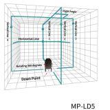 Les lignes de LD 5 verdissent l'individu nivelant le niveau de laser de 360 degrés