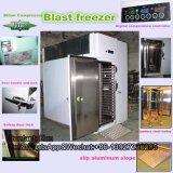 Congelador rápido/máquina congelação rápida/congelador da explosão (QF-D2)