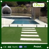 Het modelleren van Groen Kunstmatig Gras voor Zwembad