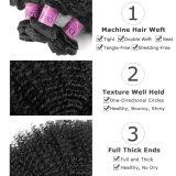 Fatoryの価格のレースの閉鎖の人間の毛髪を搭載するブラジルの毛の束