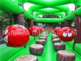 3 en 1 juego inflable del tiro de la bola / castillo inflable casero de los deportes / castillo inflable del salto