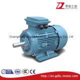 Motore elettrico di induzione a tre fasi di alta efficienza di serie di Y