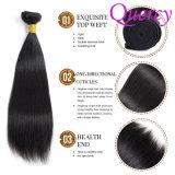 Pacote de grossista de fornecedores de cabelo, Grau 8 UMA AMOSTRA GRÁTIS pacotes de cabelo
