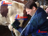 Scanner à ultrasons à usage vétérinaire, l'échographie Machinefor équine, bovine, porcine, les chiens, chats, chevaux, bovins, de vache, chèvre, mouton, l'EFP Machine à ultrasons