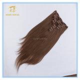 Kundenspezifisches Farben-Qualitäts-großes auf lagerclip-Extensions-Haar mit Fabrik-Preis Ex-065