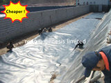 Дешевые цены HDPE Geomembrane для рыбной фермы или Man-Made озера