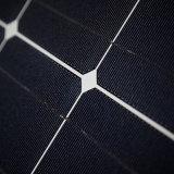 DSP300W Mono-Crystalline Solar Module in China