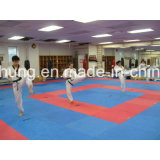 Tapis, des tapis de plancher, Tatami de Judo