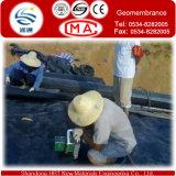 제조자 HDPE 보조개 Geomembrane/PVC는 막 또는 Geotextile 막 또는 건축 막을 방수 처리한다