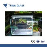 4/5/6mm Ultra Claro/baixa o vidro temperado de ferro com os furos/bordas polidas para o Green House