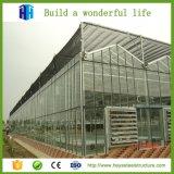 Structure métallique de bâti en aluminium pour la serre chaude