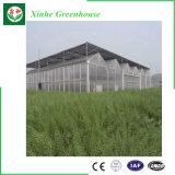 Mejor precio de la agricultura Multi-Span invernadero PC