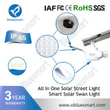 IP65 30W tout dans les lumières solaires extérieures d'une lanterne de rue