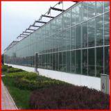 정원을%s 농업 다중 경간 Commerical 유리제 온실