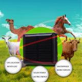 GPS étanche IP66 Les animaux de compagnie Tracker avec -Powered batterie solaire V26
